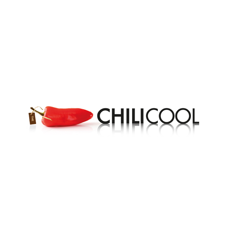 THECHILICOOL.COM